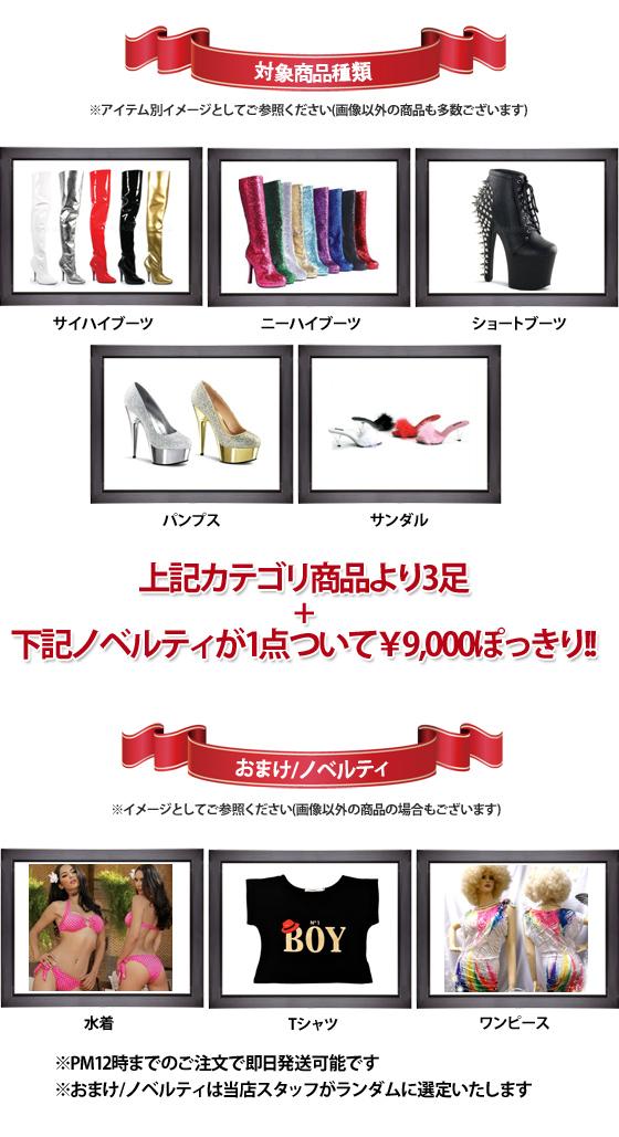 2015年!「靴神」がさらに神度がアップ!靴神リターンズ!靴×3足 9000円の最強靴袋